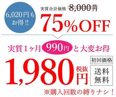 ライスビギン1980円