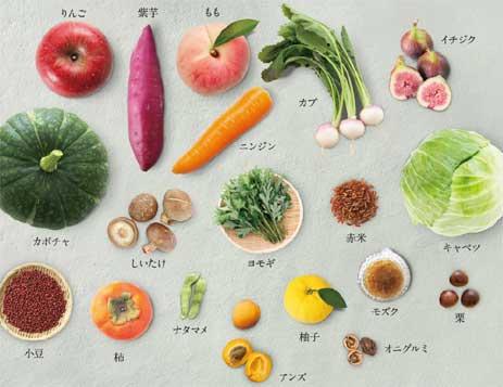 65種類の植物酵素