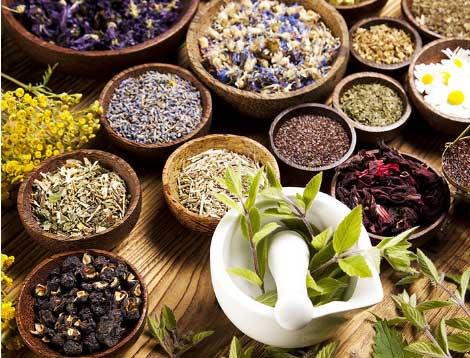 9種の植物エキスを配合