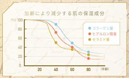 美容成分(コラーゲン・ヒアルロン酸・セラミドなど)の減少